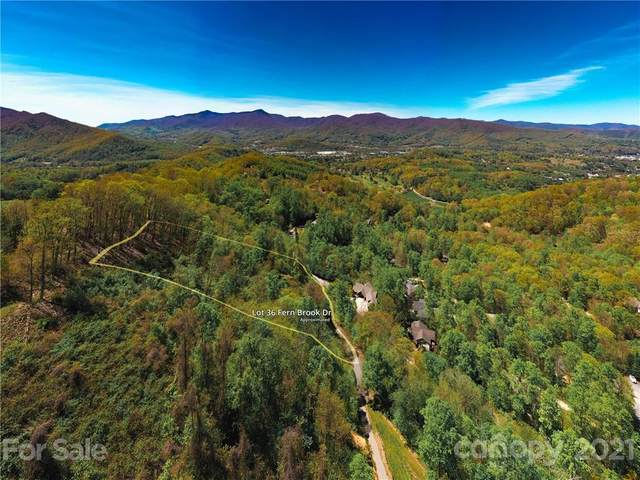 LOT 36 Fern Brook Drive, Waynesville, NC 28786 (#3554424) :: Carlyle Properties