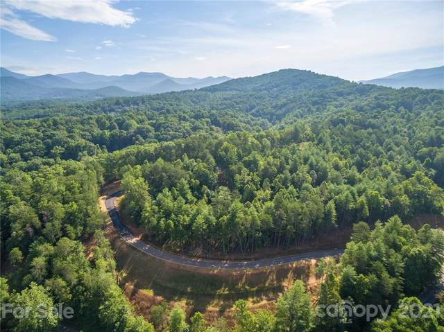 165 Riverbend Forest Drive #11, Asheville, NC 28805 (#3558759) :: Keller Williams South Park