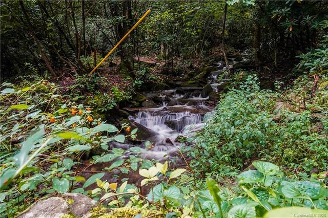 2.89 Acres Lady Slipper Trail 49 & Pt 48 & Ad, Swannanoa, NC 28778 (#3591944) :: Stephen Cooley Real Estate Group