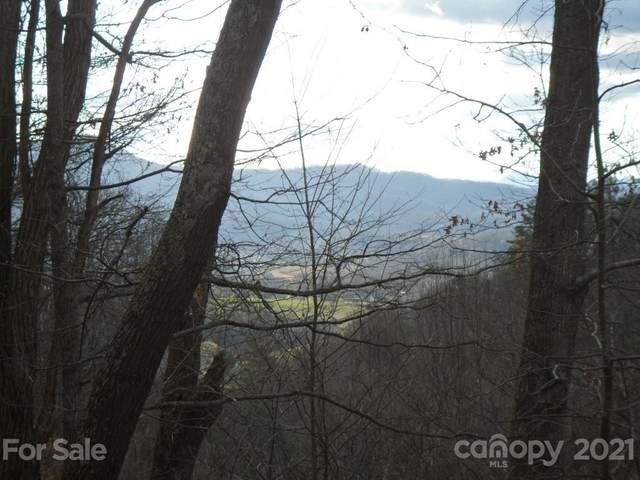 Lot 12 Coyote Hollow Road, Waynesville, NC 28785 (#3600353) :: Willow Oak, REALTORS®