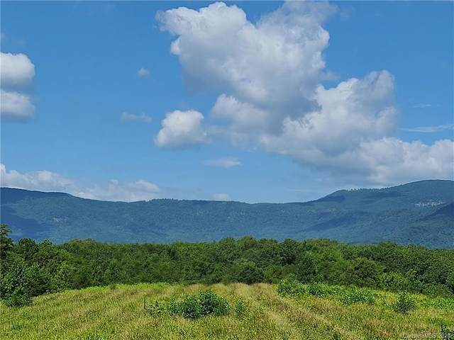 24.17 acres Walnut Falls Lane #16, Mill Spring, NC 28756 (#3601852) :: Carlyle Properties