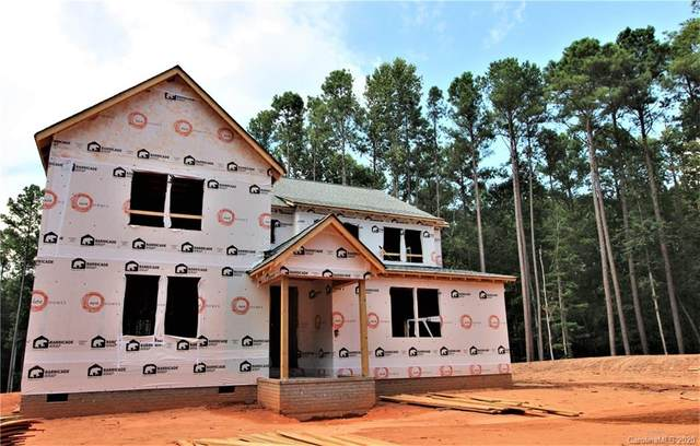 16412 Here At Last Lane, Charlotte, NC 28278 (#3604329) :: High Performance Real Estate Advisors