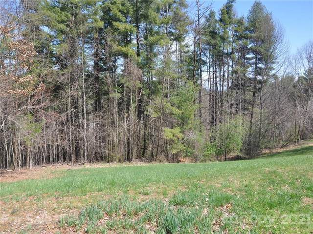 LOT 17 Thornapple Drive, Hendersonville, NC 28739 (#3606712) :: The Premier Team at RE/MAX Executive Realty