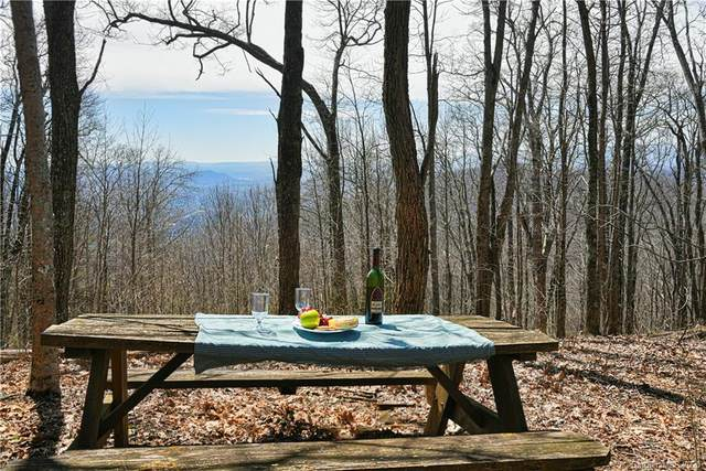 79 Hickory Forest Lane, Fairview, NC 28730 (#3607042) :: Carlyle Properties