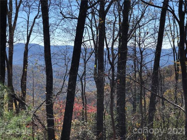 17 acres Chestnut Forest Road, Fairview, NC 28730 (#3632812) :: Rowena Patton's All-Star Powerhouse