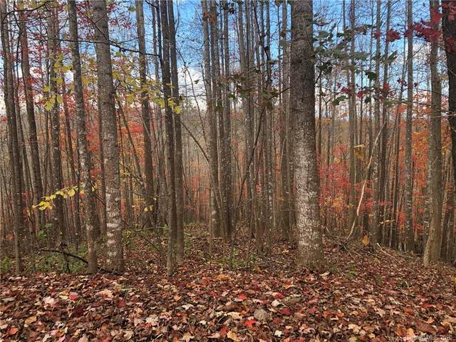 Lot 70V Brindlewood Drive 70V, Nebo, NC 28761 (#3633611) :: Ann Rudd Group
