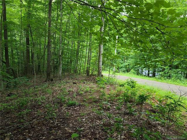 79 Apgar Road, Candler, NC 28715 (#3633919) :: LePage Johnson Realty Group, LLC