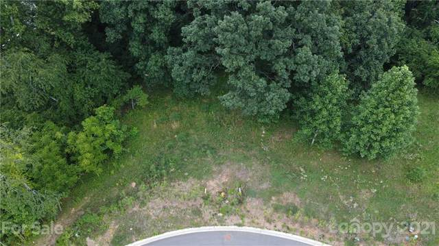 155 Meadow Breeze Road #13, Arden, NC 28704 (#3653481) :: Premier Realty NC