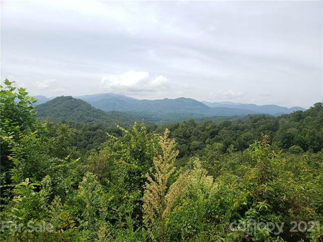 00 Mountainside Drive #21, Bryson City, NC 28713 (#3656545) :: The Premier Team at RE/MAX Executive Realty