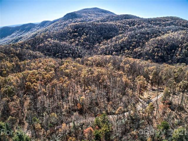 0 Deer Lick Lane Lot 25, Black Mountain, NC 28711 (#3668891) :: LePage Johnson Realty Group, LLC