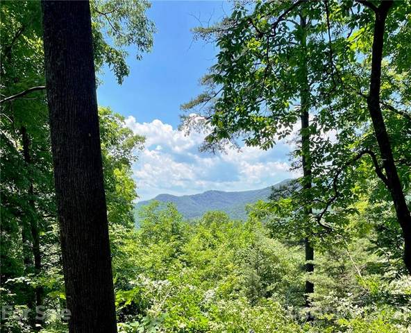 TR 5 Elk Mountain Lane, Ferguson, NC 28624 (#3675456) :: Puma & Associates Realty Inc.