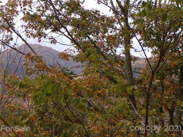00 Tater Patch Road 17 And 18, Maggie Valley, NC 28751 (#3676017) :: Mossy Oak Properties Land and Luxury