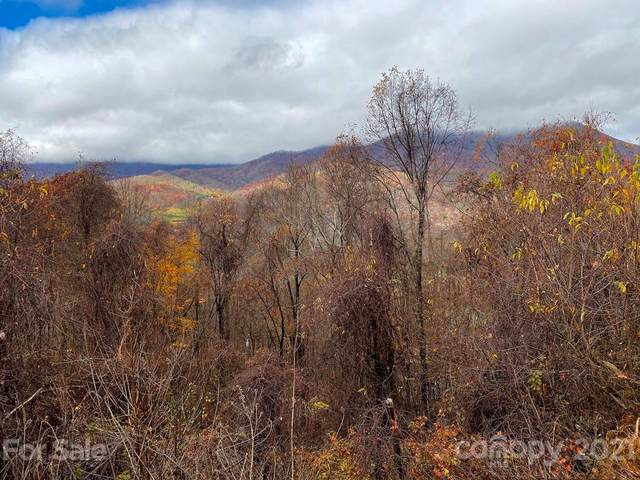 00 Forest Drive #2, Maggie Valley, NC 28751 (#3682770) :: Modern Mountain Real Estate