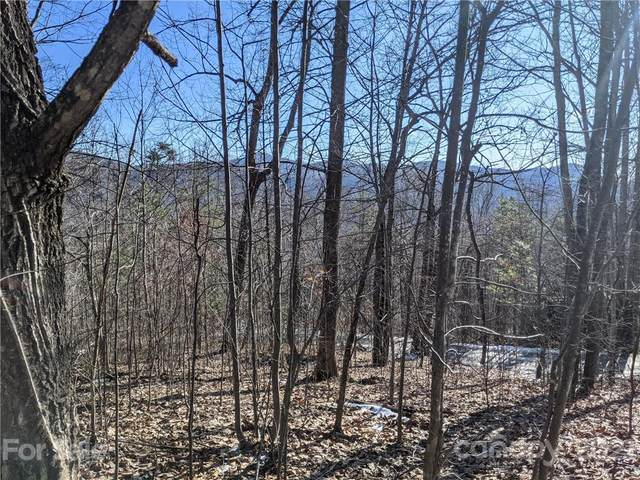 Lot 24 Bald Eagle Drive Lot  #24, Hendersonville, NC 28792 (#3685606) :: The Allen Team