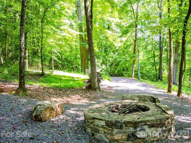 1266 Ron Whicker Drive #99, Catawba, NC 28609 (#3700566) :: BluAxis Realty