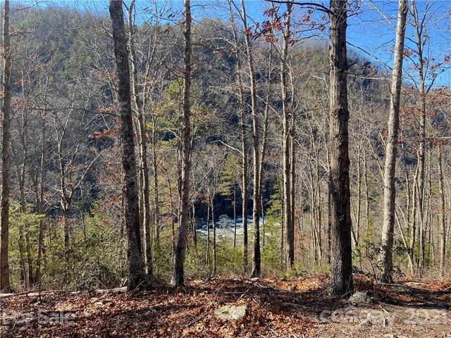 4155 French Broad Parkway #61, Marshall, NC 28753 (#3700613) :: High Performance Real Estate Advisors