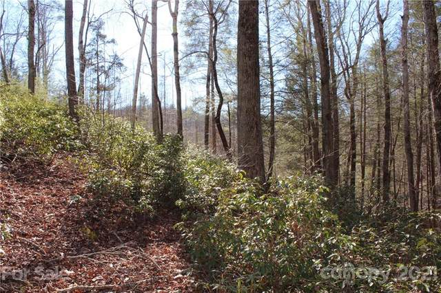 Lot 346 Rock Ledge Drive, Lake Lure, NC 28746 (#3701987) :: High Performance Real Estate Advisors