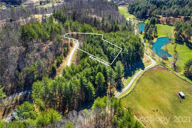TBD Big Rock Creek Drive #18, Bakersville, NC 28705 (MLS #3708272) :: RE/MAX Journey