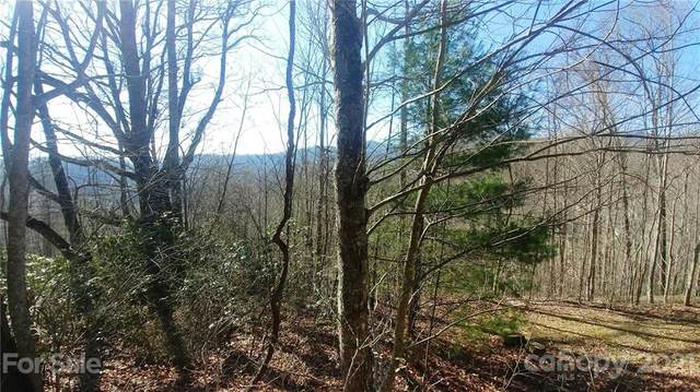 52 Turn-A-Bout Court #52, Waynesville, NC 28785 (#3725439) :: Home and Key Realty