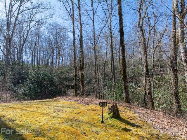 L20 Barts Branch Drive, Balsam Grove, NC 28708 (#3725794) :: Mossy Oak Properties Land and Luxury