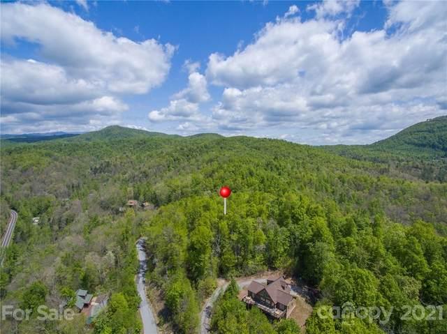 88 Havens Creek Road, Black Mountain, NC 28711 (#3725984) :: TeamHeidi®