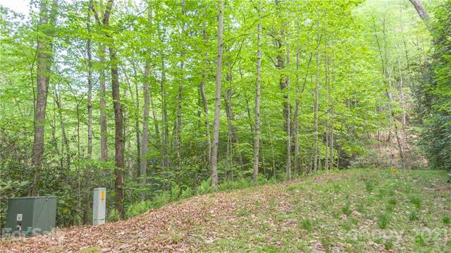 TBD Dundee Lane #5, Pisgah Forest, NC 28768 (#3735701) :: Stephen Cooley Real Estate Group