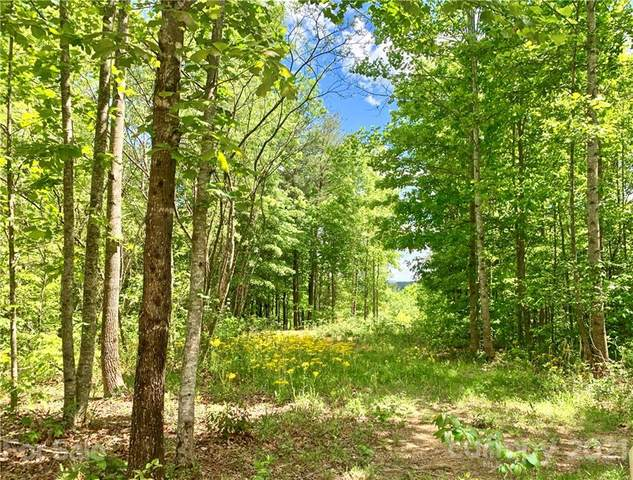 0 High Country Extension Lot 810, Lenoir, NC 28645 (#3737015) :: Odell Realty
