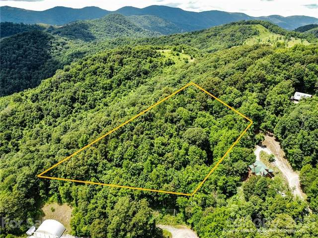 Lot 55 Rock House Cove Road, Clyde, NC 28721 (#3752674) :: LePage Johnson Realty Group, LLC