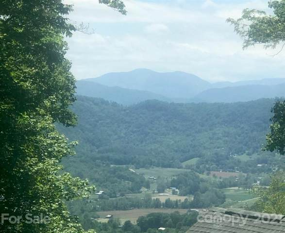 1445 Red Maple Drive, Waynesville, NC 28785 (#3753203) :: BluAxis Realty