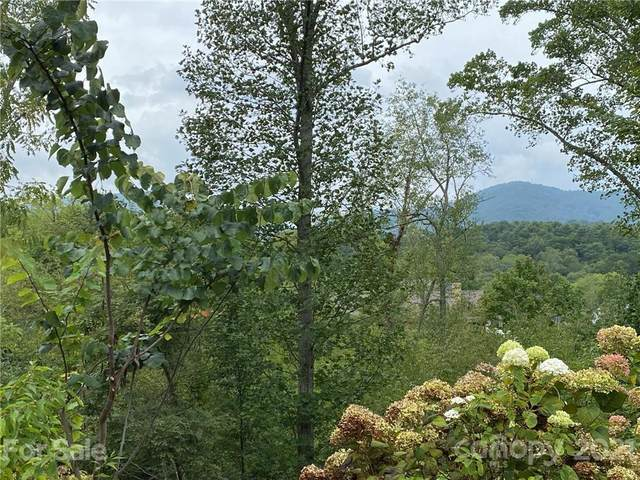 7 Magnolia View Trail #27, Asheville, NC 28804 (#3773918) :: Mossy Oak Properties Land and Luxury
