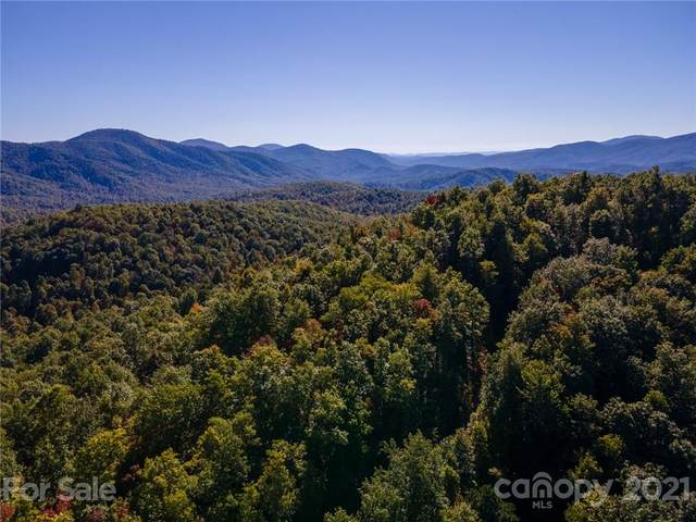 TBD Laurel Mountain Trail, Black Mountain, NC 28711 (#3785368) :: Home Finder Asheville