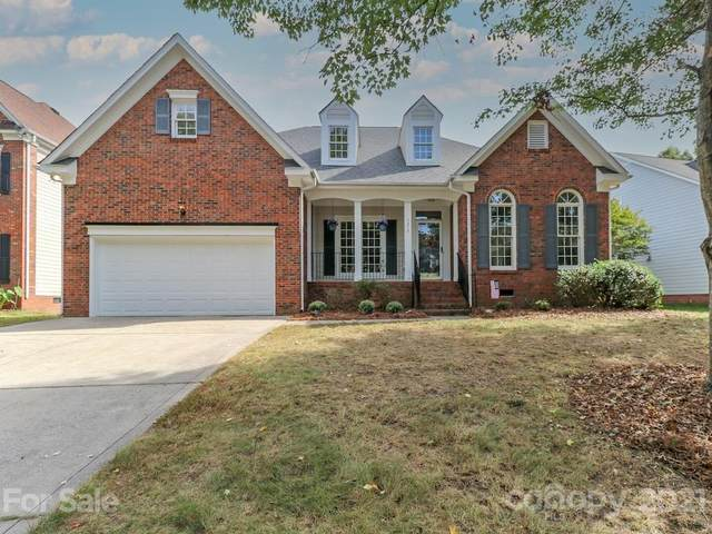 7212 Fortrose Lane, Charlotte, NC 28277 (#3795017) :: The Premier Team at RE/MAX Executive Realty