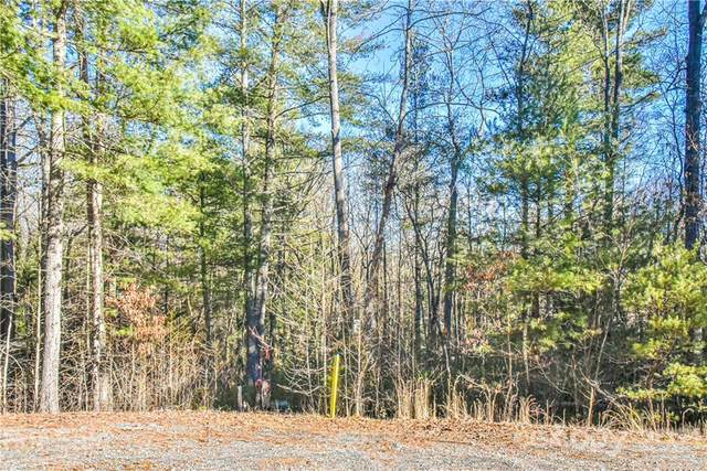 29 Buffalo Creek Drive #3, Fairview, NC 28730 (#3580226) :: Keller Williams Professionals