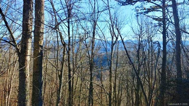 107 Bridal Veil Terrace #107, Waynesville, NC 28785 (#3596240) :: DK Professionals Realty Lake Lure Inc.