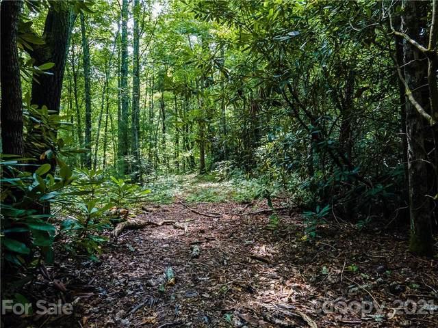 0000 Shadow Ridge Drive, Fletcher, NC 28732 (#3596912) :: DK Professionals