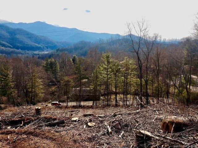 Lot 1 Off Carriage Lane, Canton, NC 28716 (#3601546) :: Carlyle Properties