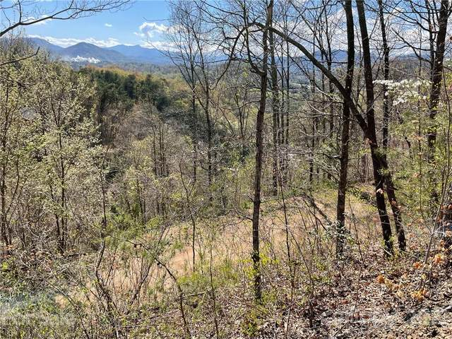 Lot 1 Johnson Farm Road, Canton, NC 28716 (#3649389) :: Home and Key Realty