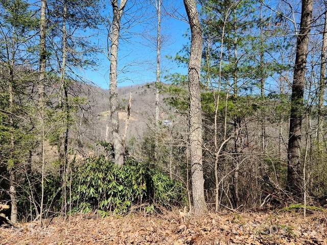 000 Harleys Cove Road Lot 7, Waynesville, NC 28785 (#3667594) :: Home and Key Realty