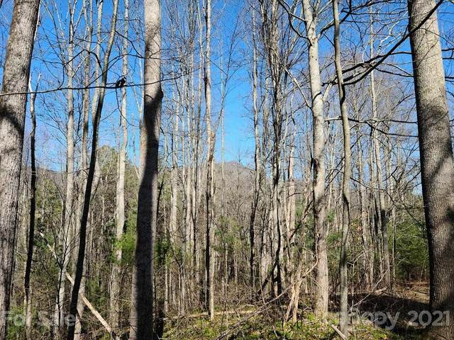 000 Harleys Cove Road Lot 21, Waynesville, NC 28785 (#3674001) :: Home and Key Realty