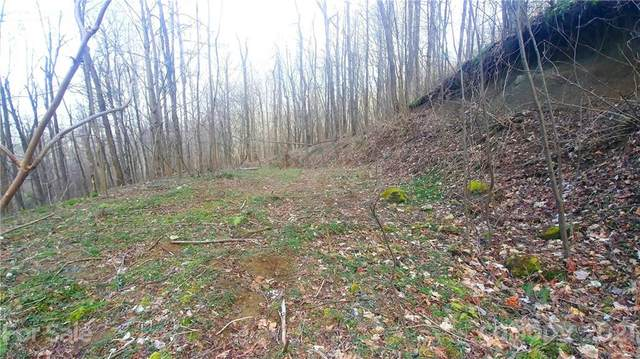 10 Twin Brook Lane, Waynesville, NC 28785 (#3689484) :: High Vistas Realty