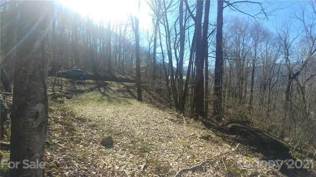 163 Mount Valley Road #163, Waynesville, NC 28785 (#3715030) :: Home Finder Asheville