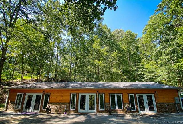 393 Newmanora Drive, Zirconia, NC 28790 (#3645124) :: The Premier Team at RE/MAX Executive Realty