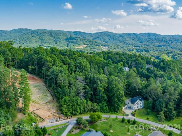 78 Hawtree Court #263, Weaverville, NC 28787 (#3657950) :: Briggs American Homes