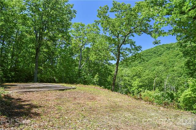 99999 Red Oak Forest Lane #1405, Fairview, NC 28730 (#3743621) :: LePage Johnson Realty Group, LLC