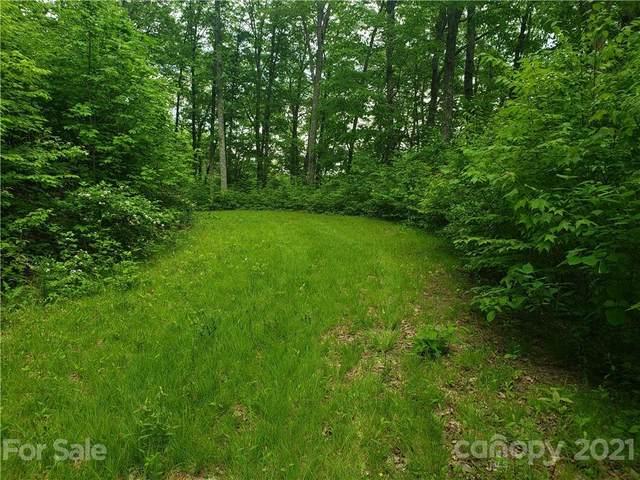 000 Deep Gap Road, Whittier, NC 28789 (#3744511) :: High Vistas Realty