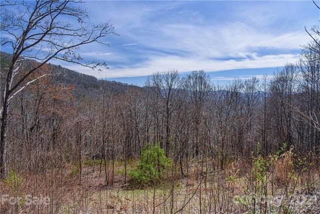 24 Poplar Forest Road 1, 2 & 3, Fairview, NC 28730 (#3609794) :: Home and Key Realty