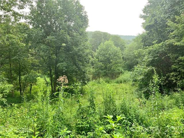 TBD Sweetwater Ridge Lot 1, Balsam Grove, NC 28708 (#3647720) :: Mossy Oak Properties Land and Luxury