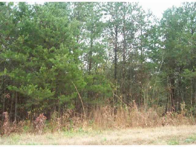 Lot 2 Petes Road, Lincolnton, NC 28092 (#406627) :: RE/MAX Four Seasons Realty