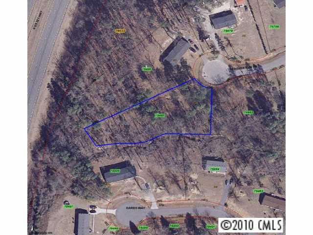 Lot 41 Beagles Run Drive, Lincolnton, NC 28092 (#919684) :: Zanthia Hastings Team