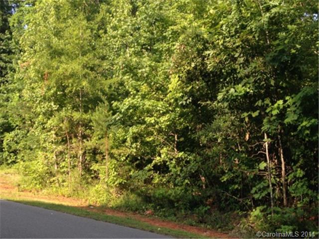 Lot 10 New Castle Court #10, Albemarle, NC 28001 (#3023082) :: Exit Mountain Realty